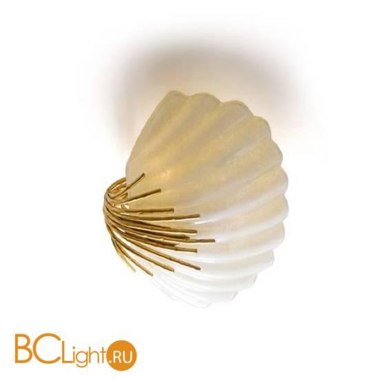 Настенно-потолочный светильник Eurolampart Conchiglia 2269/03PL 3001