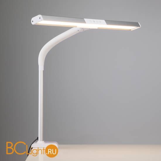 Настольная лампа Eurosvet Designer 80500/1 белый 9W