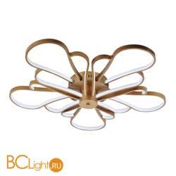 Потолочный светильник Favourite Bluten 2548-5U