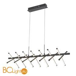 Подвесной светильник Favourite Carcass 2382-14P
