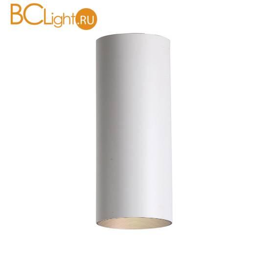 Потолочный светильник Favourite Drum 2247-1U
