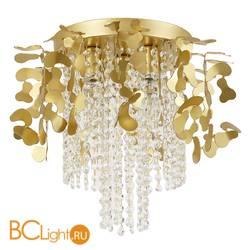Потолочный светильник Favourite Florentina 2484-5U