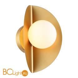Настенный светильник Favourite Kernel 2366-1W