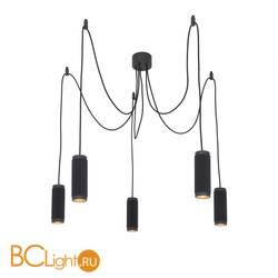 Подвесной светильник Favourite Kinescope 2452-5P