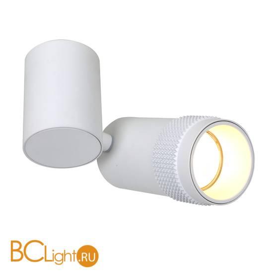 Потолочный светильник Favourite Kinescope 2453-1U