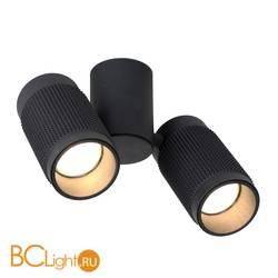 Потолочный светильник Favourite Kinescope 2452-2U