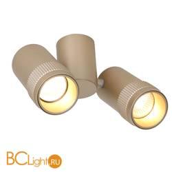 Потолочный светильник Favourite Kinescope 2455-2U