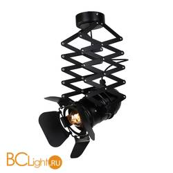 Потолочный светильник Favourite Limelight 2069-1U