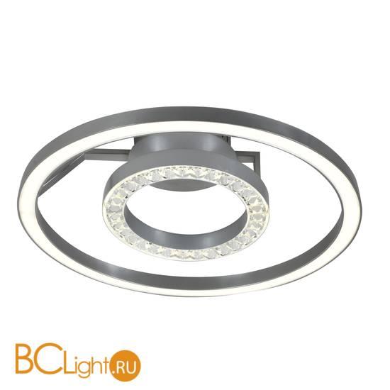 Потолочный светильник Favourite Sanori 2593-2U