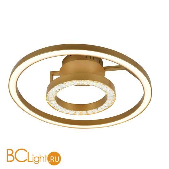 Потолочный светильник Favourite Sanori 2546-2U