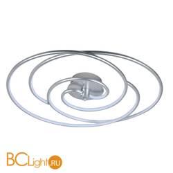 Потолочный светильник Favourite Sansara 2545-2U