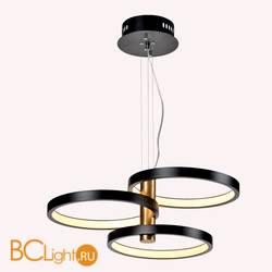 Подвесной светильник Favourite Umlauf 2116-3P