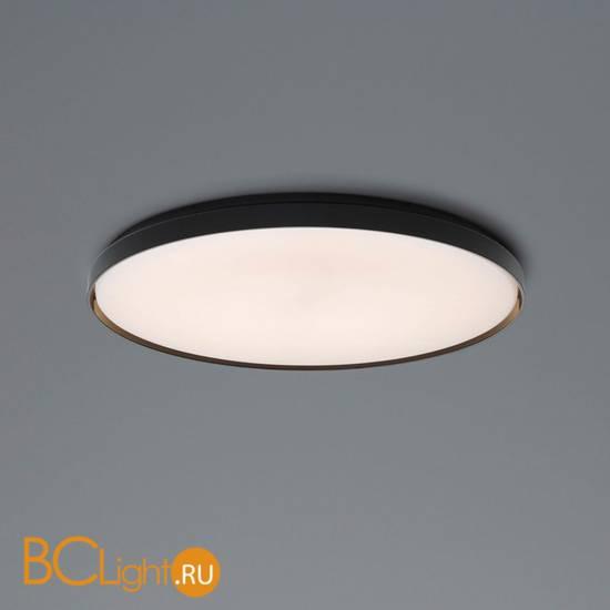Настенно-потолочный светильник Flos Clara Black ring F1570009+F1571030