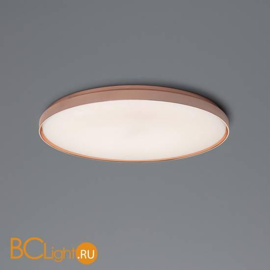 Настенно-потолочный светильник Flos Clara Copper ring F1570009+F1571015