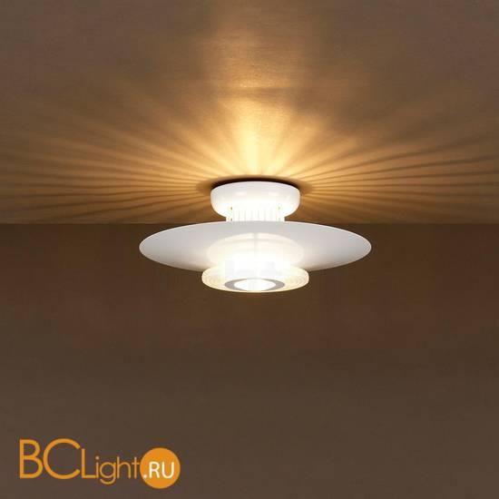 Потолочный светильник Flos Moni 2 F3901009