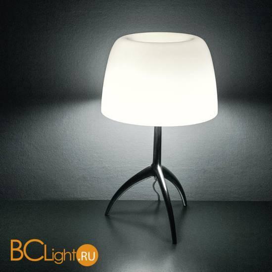 Настольная лампа Foscarini Lumiere 026011R2 11