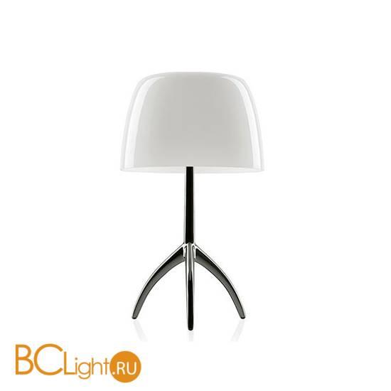 Настольная лампа Foscarini Lumiere 0260112R2 11