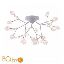Потолочный светильник Freya Florencia FR5049CL-27W