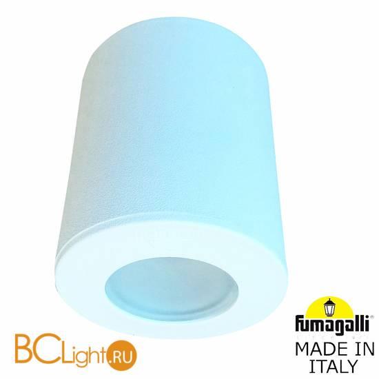 Уличный потолочный светильник Fumagalli Franca 90 3A7.000.000.WXU1L