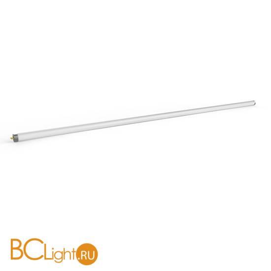 Лампа Gauss LED Elementary T8 Glass 1200mm G13 20W 1600lm 6500K 93039