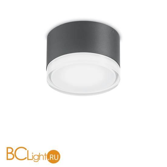 Уличный потолочный светильник Ideal Lux Urano PL1 SMALL ANTRACITE 168111
