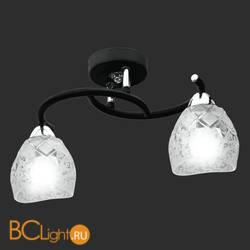 Потолочный светильник IDlamp 381/2PF-Blackchrome