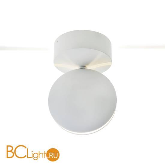 Уличный потолочный светильник Kink Light Ореон 08574,01(4000К)