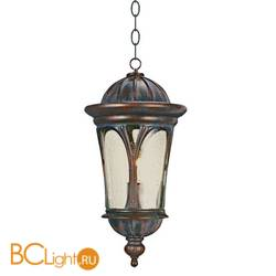 Уличный подвесной светильник L'Arte Luce Boreal L76601.72