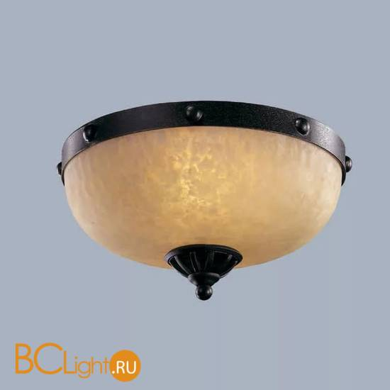 Потолочный светильник L'Arte Luce Fort L50352.46