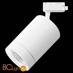 Трековый светильник Lightstar Canno 303262