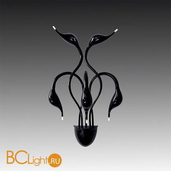 Бра Lightstar CIGNO COLLO MB8098-5A BK 751657
