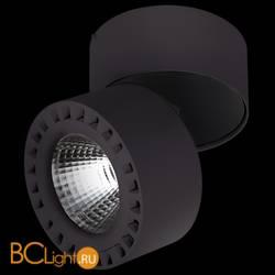 Потолочный светильник Lightstar Forte 381373