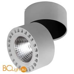 Потолочный светильник Lightstar Forte 381394