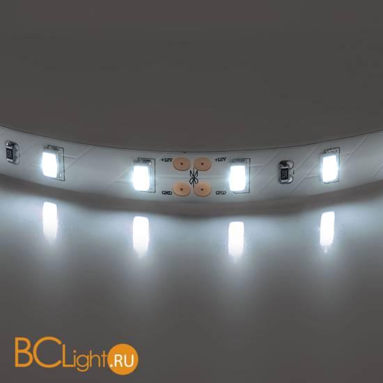 Светодиодная лента Lightstar LED strip light 400076 12V 28.8W 4200-4500K 2550Lm IP20