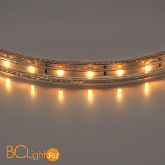 Светодиодная лента Lightstar LED strip light 402002 220V 2800K-3200K 210Lm IP65