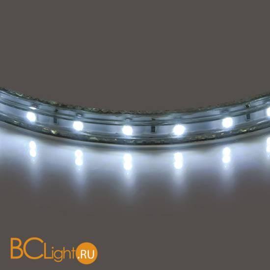 Светодиодная лента Lightstar LED strip light 402004