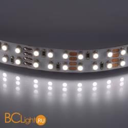 Светодиодная лента Lightstar LED strip light 400024 12V 19.2W 4200-4500К 840Lm IP20