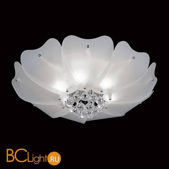Потолочный светильник Lightstar Lobo 804020