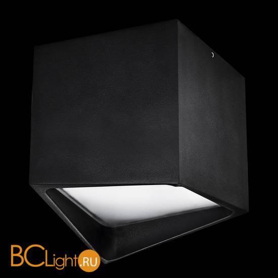 Спот (точечный светильник) Lightstar Quadro 211477