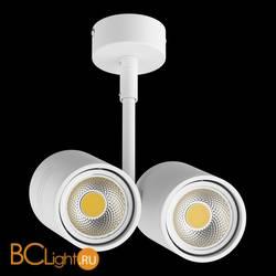 Спот (точечный светильник) Lightstar Rullo 214446