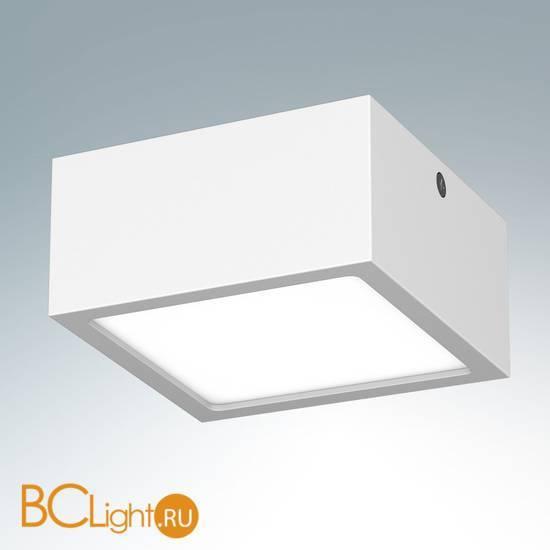 Накладной светодиодный светильник Lightstar Zolla 213926