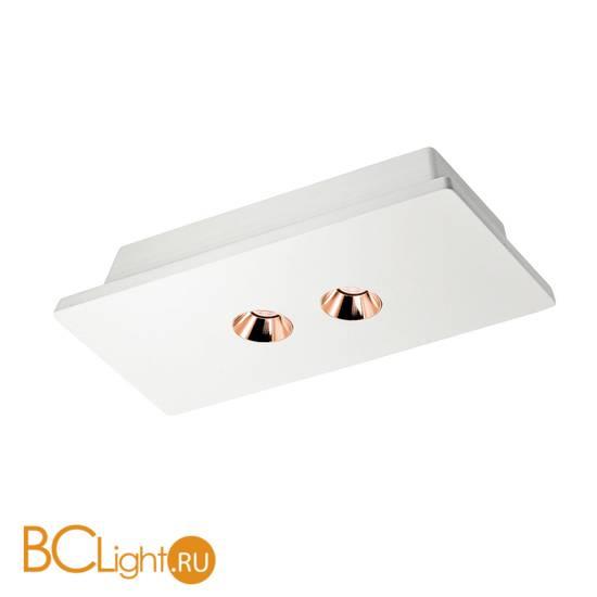Потолочный светильник LOFT IT Architect OL1072-WG/2