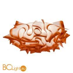 Потолочный светильник LOFT IT Sylvia 9088C-1S orange