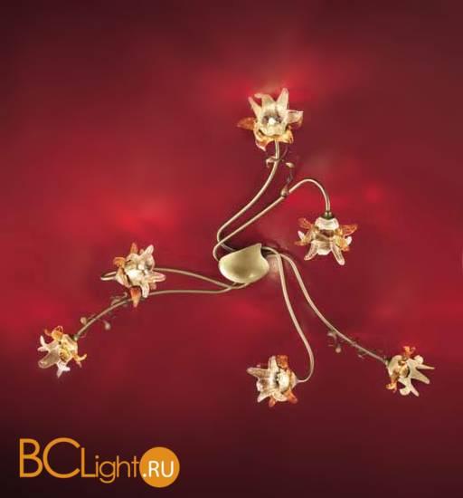 Настенно-потолочный светильник LuceCrea Trilly 379634 DP B
