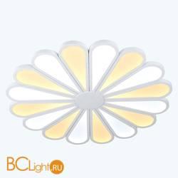 Потолочный светильник Lucia Tucci Miracoli 203.20 LED