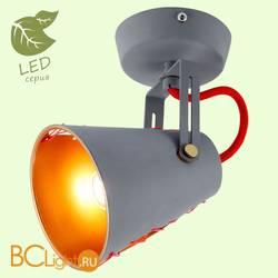 Потолочный светильник Lussole Loft Anso GRLSP-8020