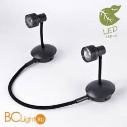 Потолочный светильник Lussole Loft Arina GRLSP-9821-02
