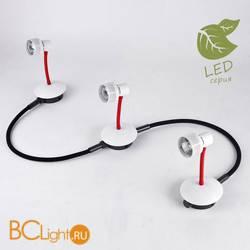 Потолочный светильник Lussole Loft Arina GRLSP-9818-03