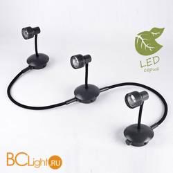 Потолочный светильник Lussole Loft Arina GRLSP-9821-03
