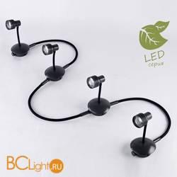 Потолочный светильник Lussole Loft Arina GRLSP-9821-04